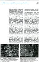 Provident revue de presse 19