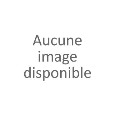 FM34 Rec Faux-Moignon 1ère prémolaire inferieure gauche